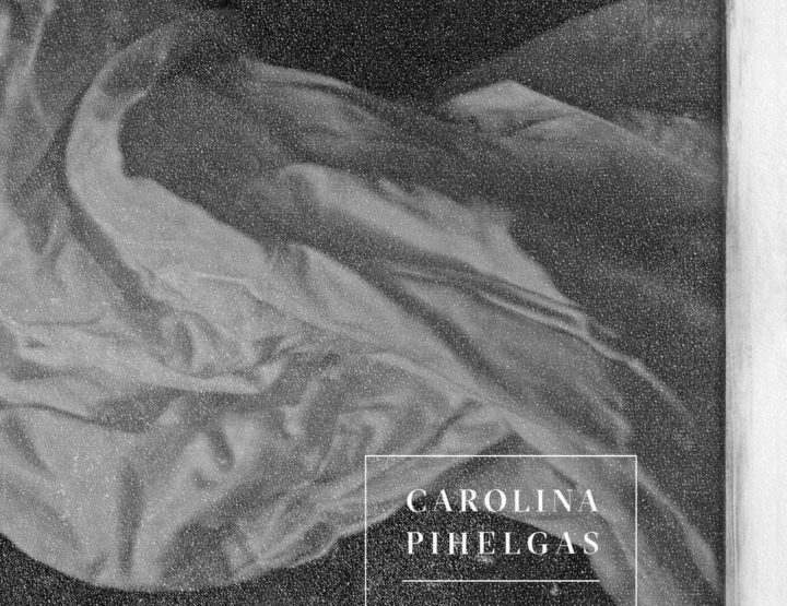 Carolina Pihelgas <br><em>Details of Darkness</em>